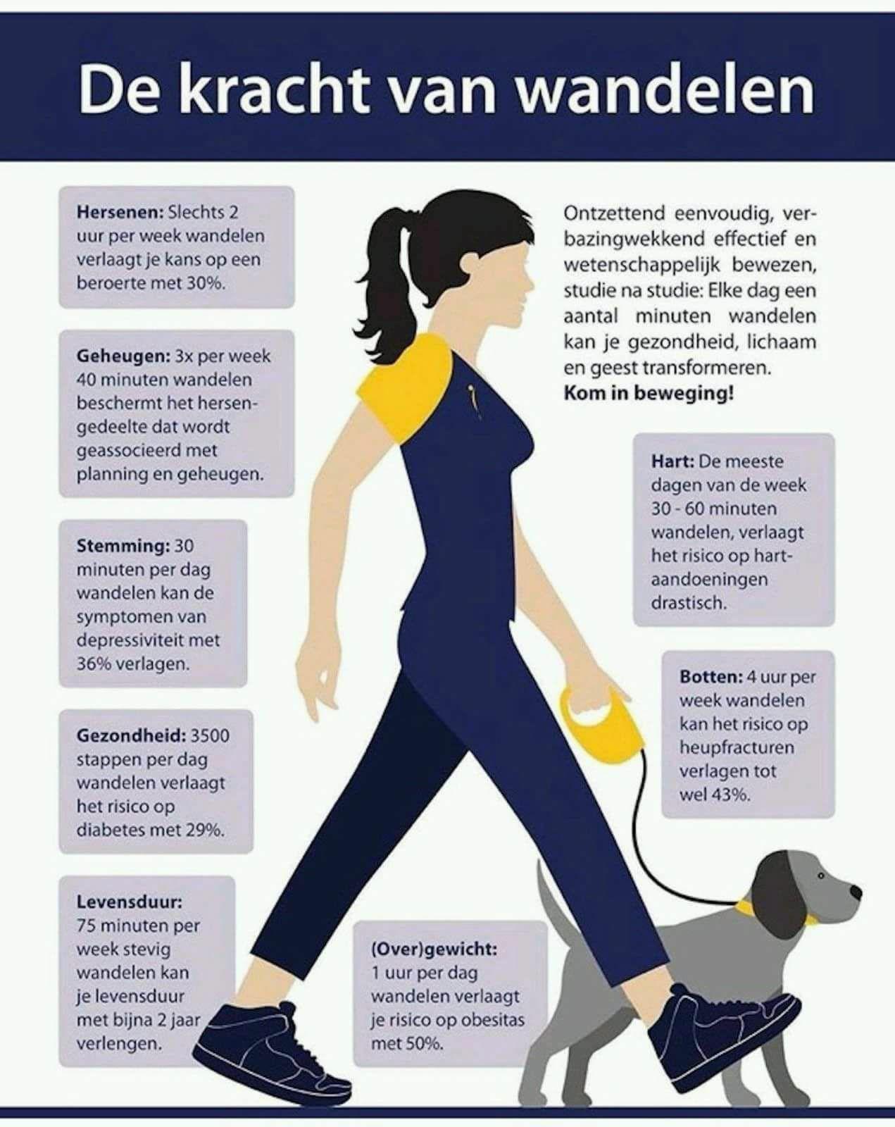 wandelen met de dokter huisarts huisartsenpraktijk heer maastricht